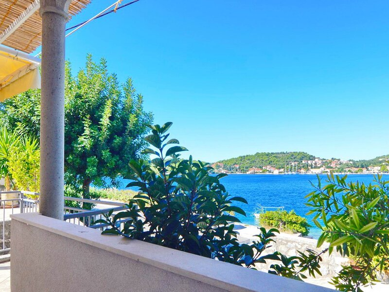 Violic - Standard Two Bedroom Apartment with Terrace and Sea View, casa vacanza a Stikovica