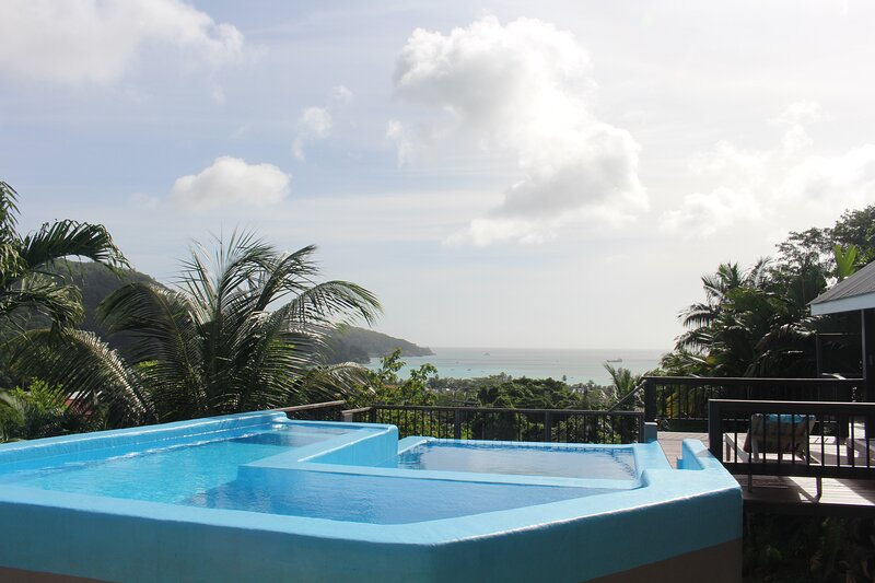 Pool  and ocean view.