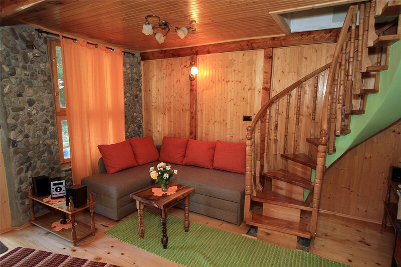 Holiday house for 5 persons, vacation rental in Skrad