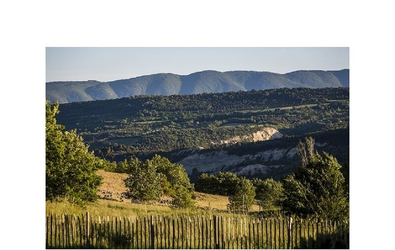 BEAUTIFUL PROVENCE STONE HOUSE,A MAGNIFICIENT HAMLET 360°VIEWS OF LUBERON HILLS, holiday rental in Simiane-la-Rotonde