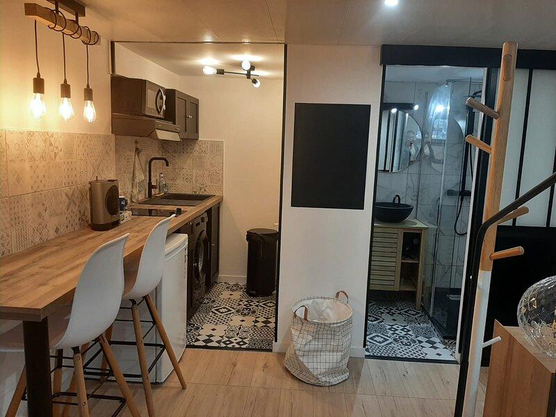 Superbe studio neuf centre ville / jardin commun, aluguéis de temporada em Aucamville