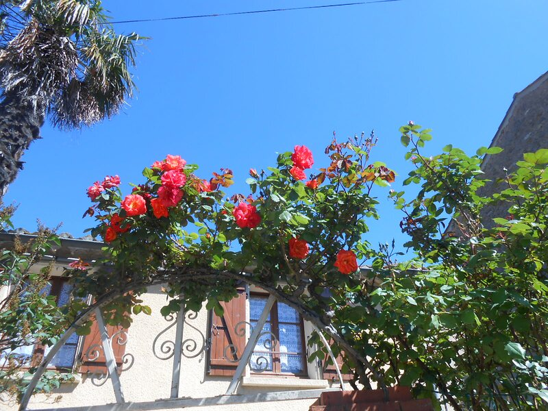 Maison Palmeral, holiday rental in Couiza