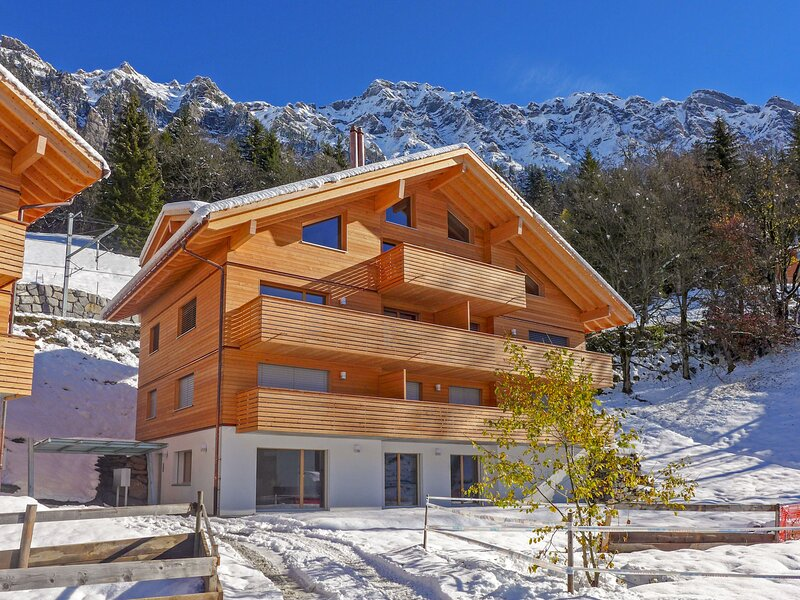 Hundschopf / Am Lehn, vacation rental in Wengen