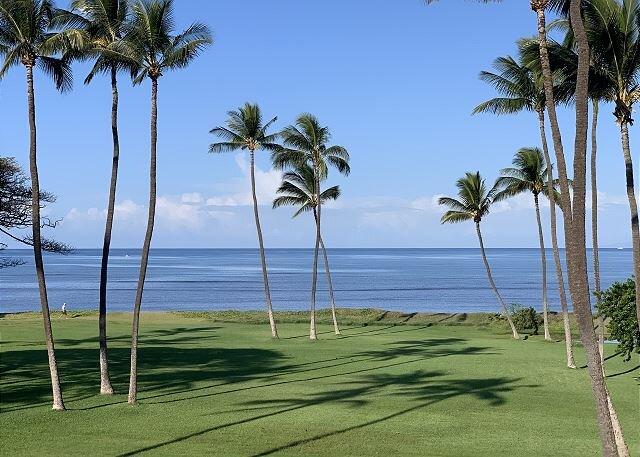 Leinaala #304 Gorgeous 1 BD Oceanfront Condo with Panoramic Ocean Views!, casa vacanza a Maui