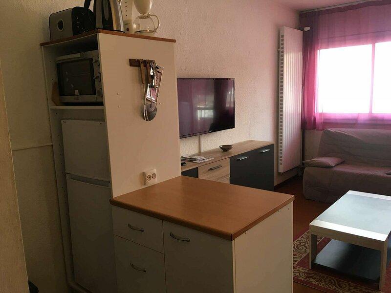 Studio 4 personnes, résidence Sarrière. Pied de Pistes, location de vacances à Gourette