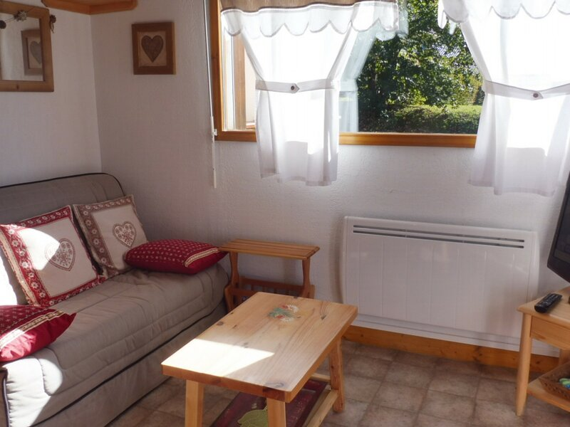 2 pieces cabine pour 4 , au pied des pistes, holiday rental in Crest-Voland