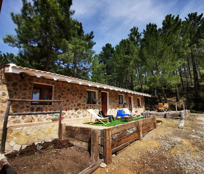 Chalet de Montaña Parque Natural Calar Río Mundo, holiday rental in Villaverde de Guadalimar