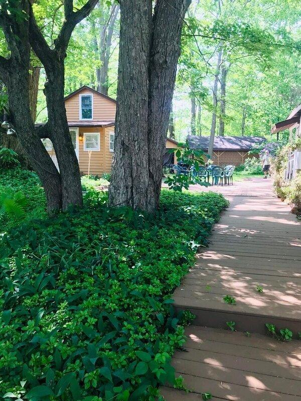 Building,Outdoors,Cottage,House,Arbour