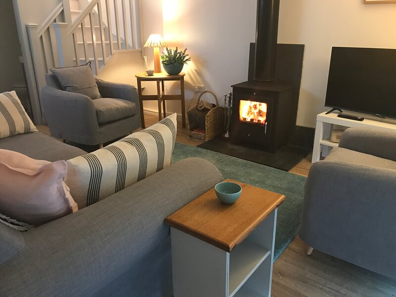 Ty Hâf Cottage sleeps 4 renovated 2021. Patios front and rear - great views, holiday rental in Llangynhafal