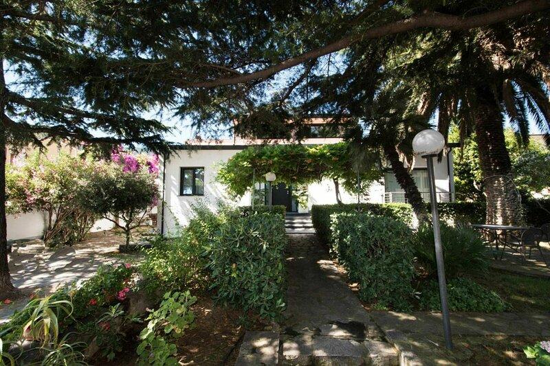 Villa Il Cedro, holiday rental in Sant'Andrea