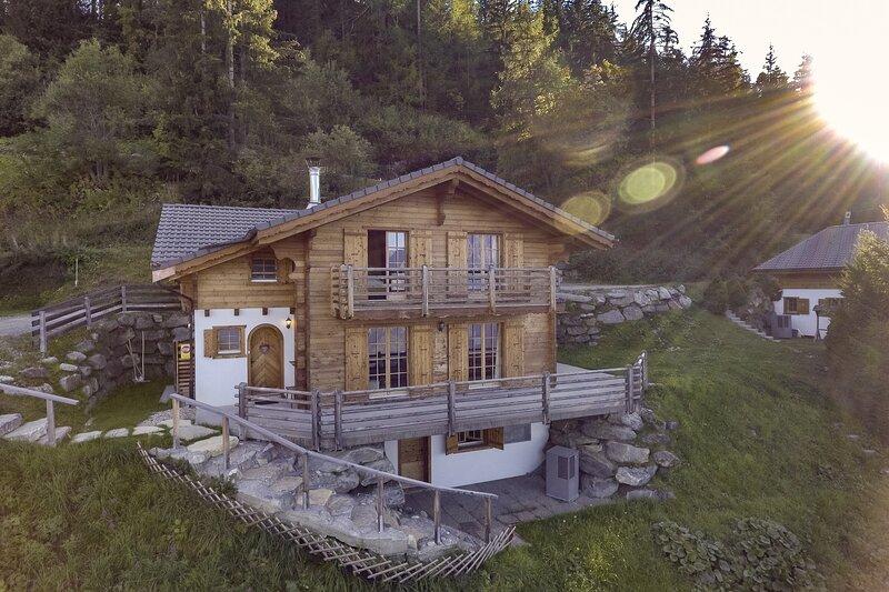 Chalet Aurelia - Ski -in & ski-out chalet with sauna, holiday rental in Riddes