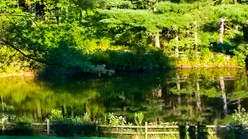 Swan Sanctuary Suite, aluguéis de temporada em Perkiomenville