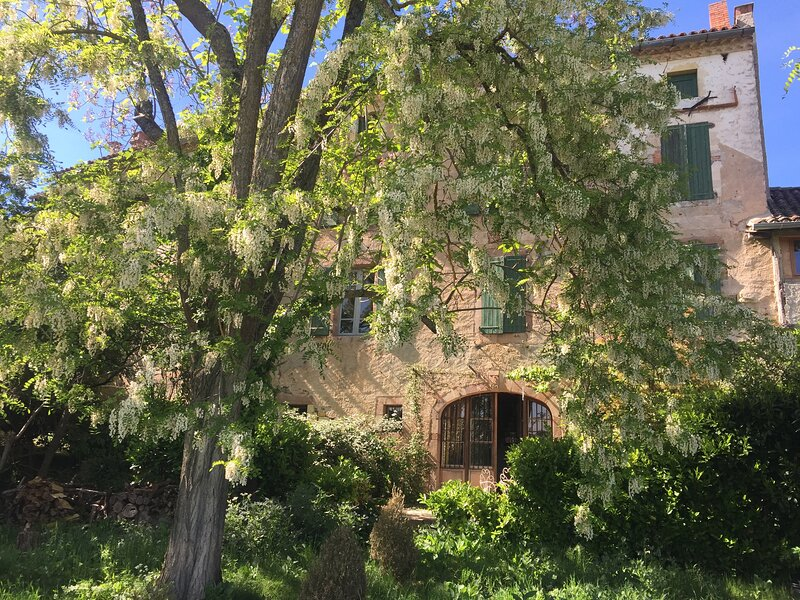 Large, beautiful village house with pool and country views, holiday rental in Cordes-sur-Ciel