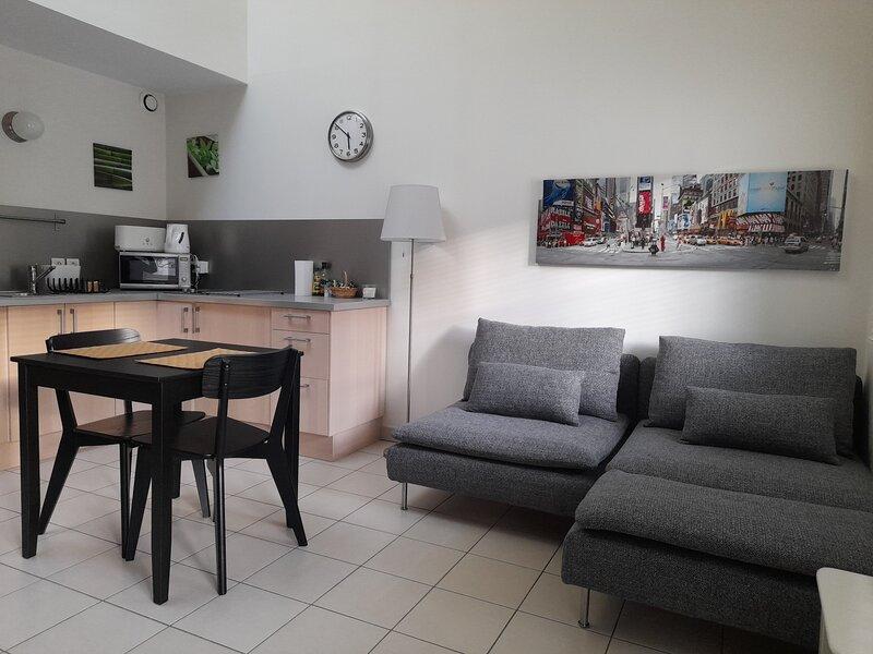 Le Saint Hippolyte -Studio avec mezzanine - 2 pers, holiday rental in Bonnefamille