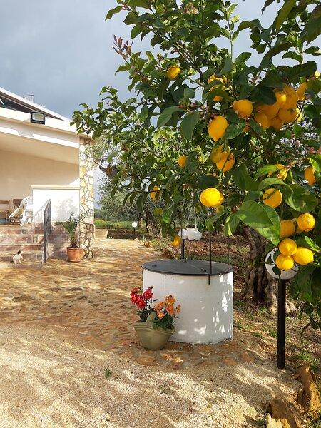 Casetta Relax da Antonio, holiday rental in Santa Margherita di Belice
