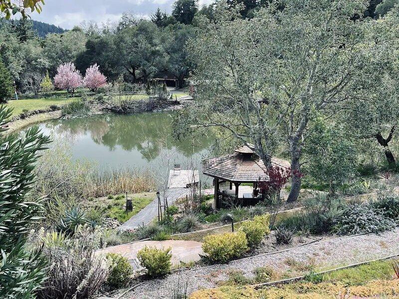 Private Apartment on a Gorgeous 23-Acre Gated Property with its own Pond!, alquiler de vacaciones en Ben Lomond
