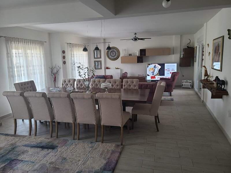 Penthouse   4-Bed Apartment in Ampelokipi, holiday rental in Menemeni
