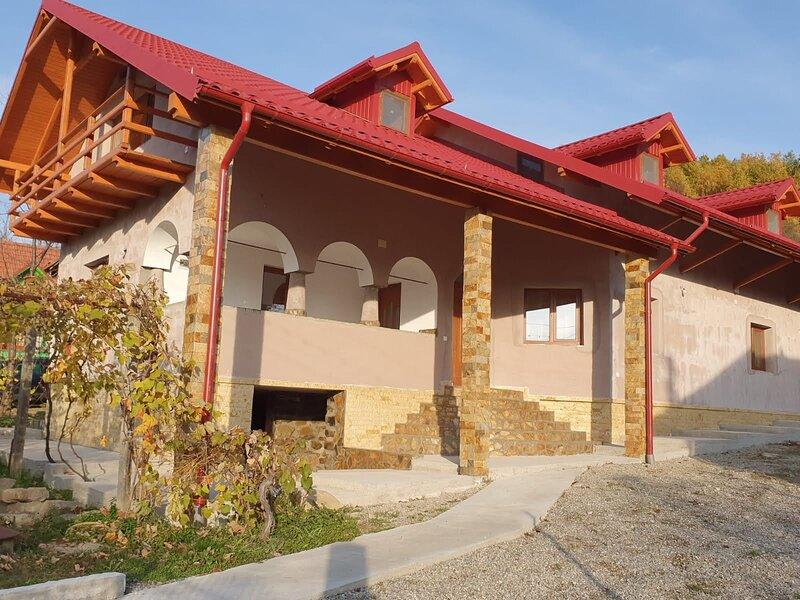 Casa Hera Călimănești, vacation rental in Arefu