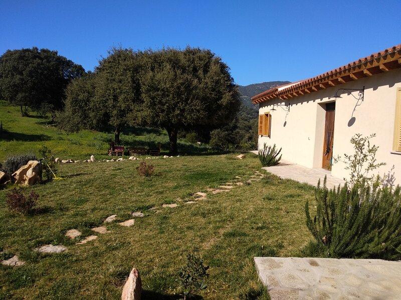 Sherdana's, holiday rental in Monti