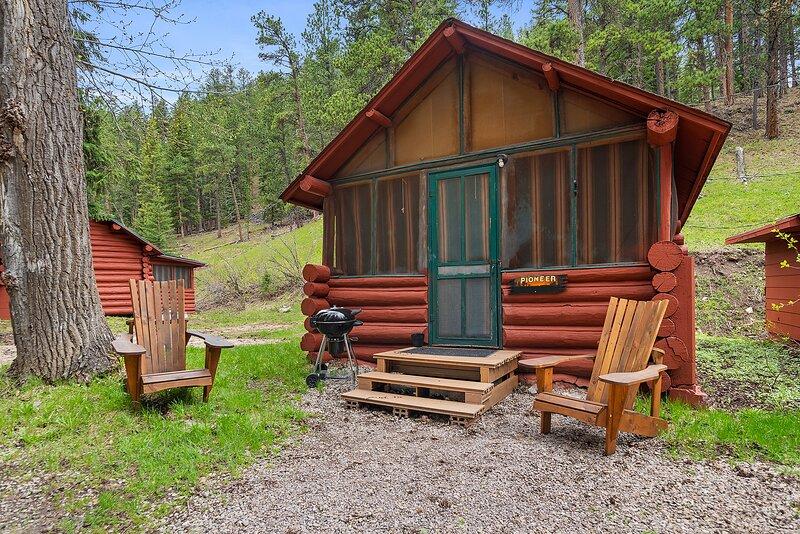 Pioneer Cabin, holiday rental in Lead