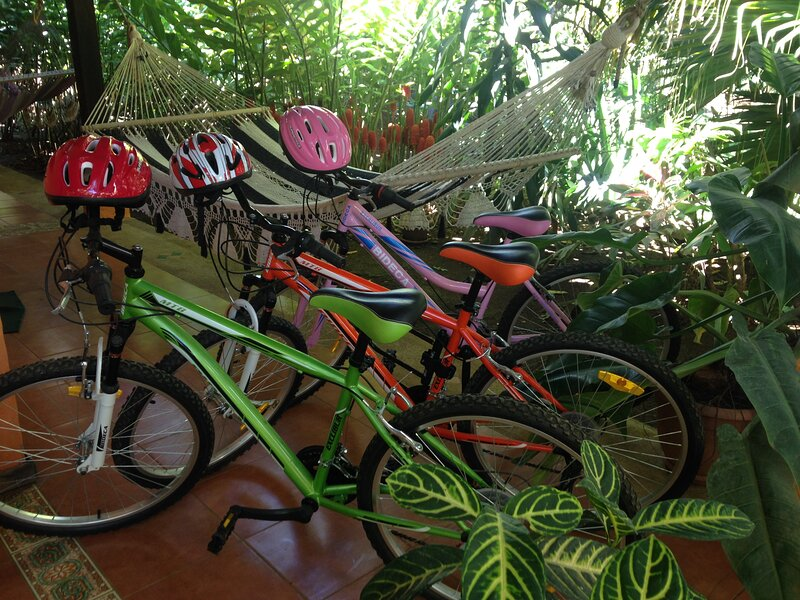 Rental bikes availlable-size of bikes is 26 inch