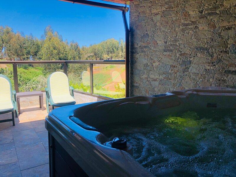 Casa Rural Moya, holiday rental in Playa Quemada