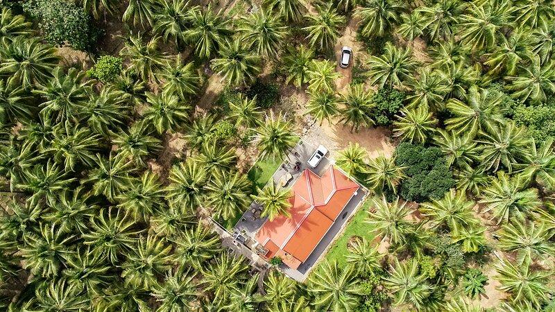 Coconut Escapes Kurunegala, holiday rental in Kurunegala