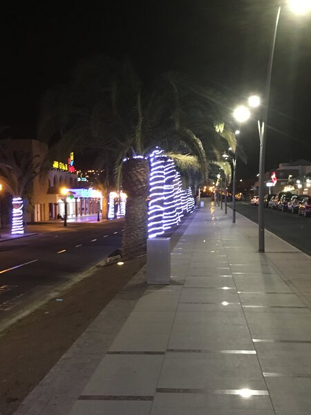 Caleta streets decorated for Xmas