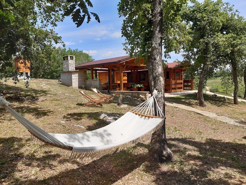 One bedroom house Vižinada, Central Istria - Središnja Istra (K-18530), holiday rental in Baldasi