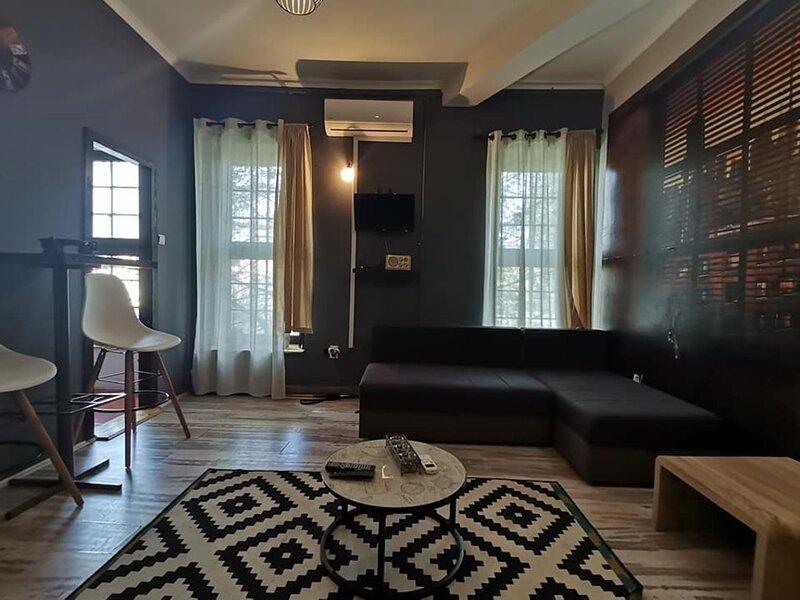 Studio apartment Brooklyn, holiday rental in Novi Sad
