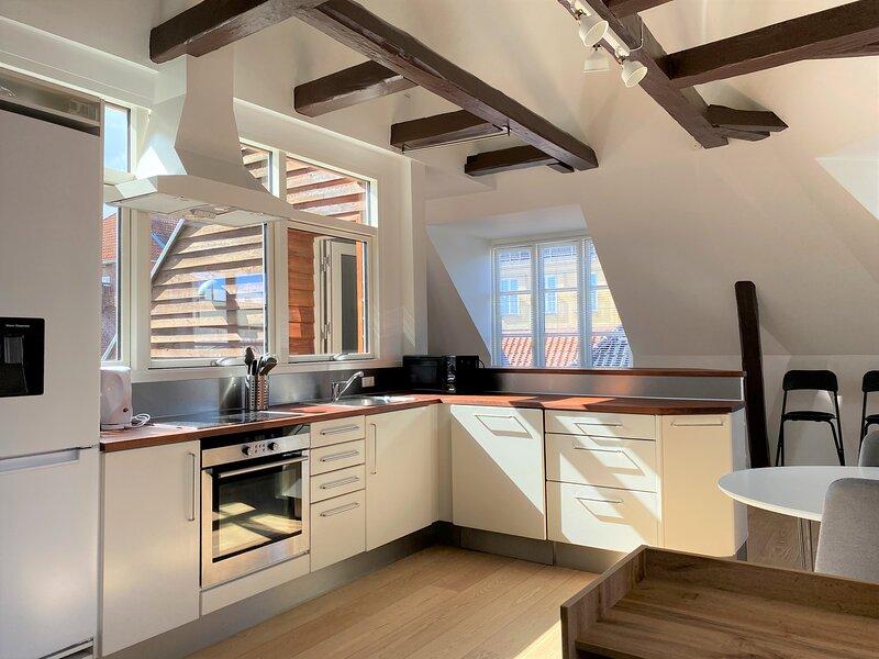 Spacious and Bright Duplex Apartment with a Terrace, alquiler vacacional en Copenhague