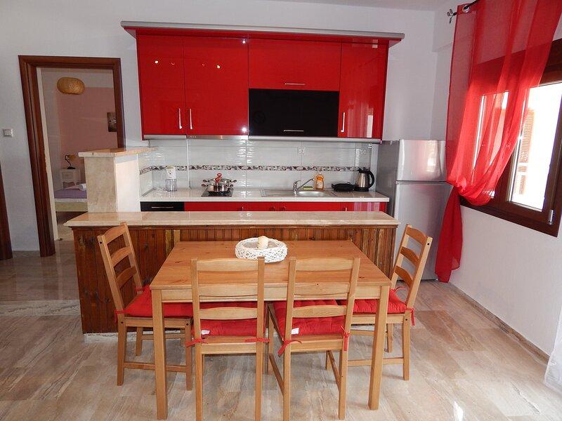 Palm House Apartments Vicky - Nikiti, vacation rental in Nikiti