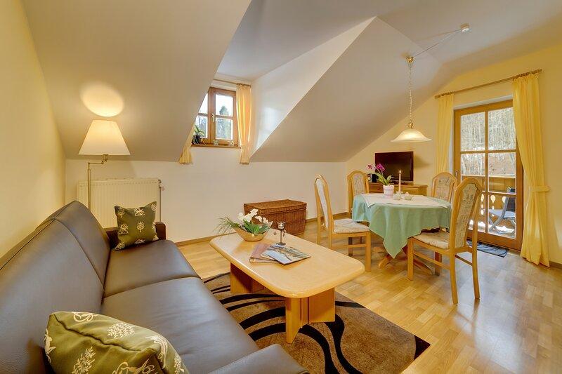 5 Sterne Wohnung Rachel, vakantiewoning in Kvilda