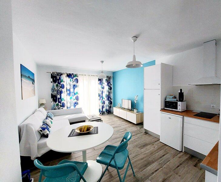 Atlantic view apartament, holiday rental in Tarajalejo
