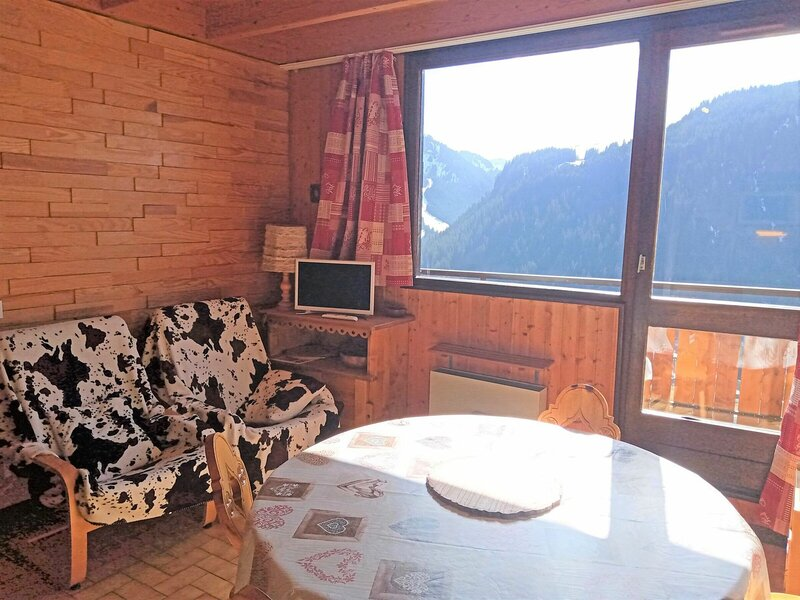 appartement 3 pièces - 6 personnes, holiday rental in Torgon