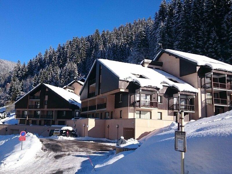 Bel appartement de 3 pièces pour 4 à 6 personnes, holiday rental in Areches