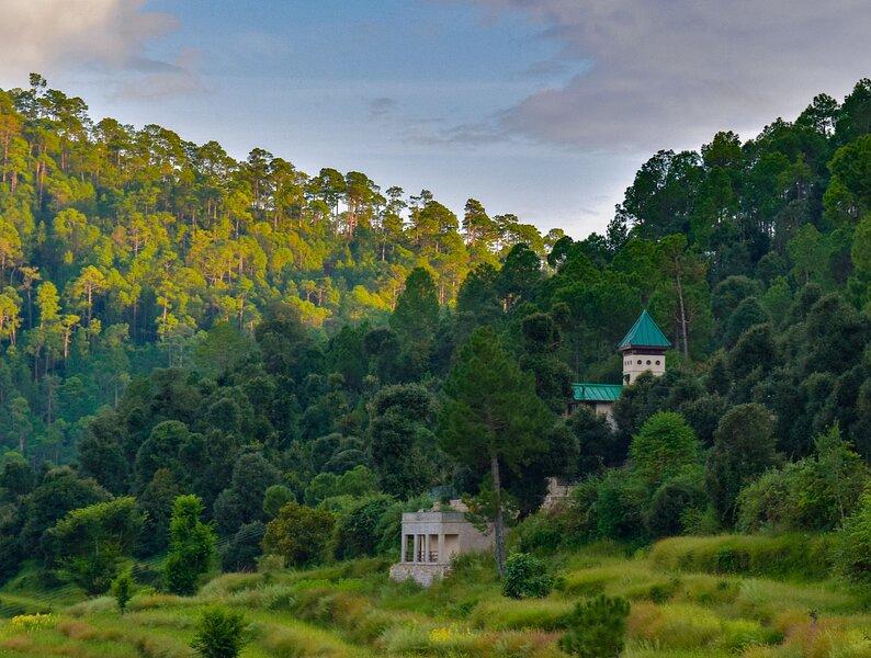 Bir Terraces : Utopia In The Hills!, holiday rental in Almora