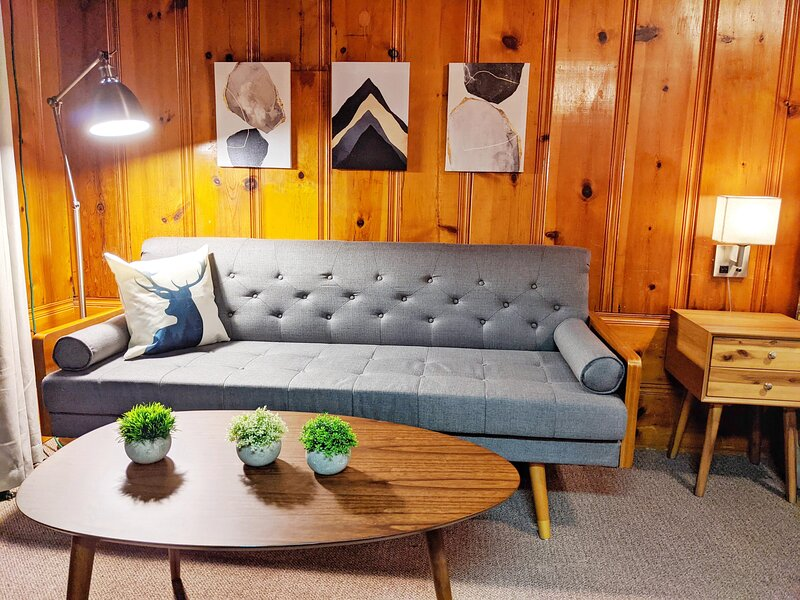 Riverside Mountain Lodge - Suite 2 - Queen Kitchenette, holiday rental in Washington
