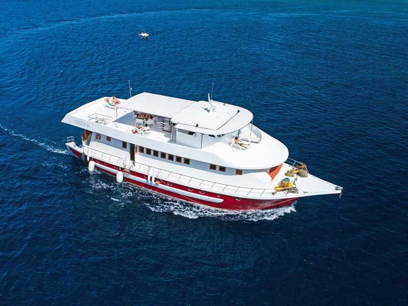 Liveaboard holiday in South and North Atoll, holiday rental in Maafushi Island