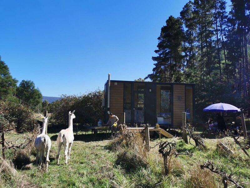 Alpaca Tiny House with Vineyard Lakeside, holiday rental in Tallarook