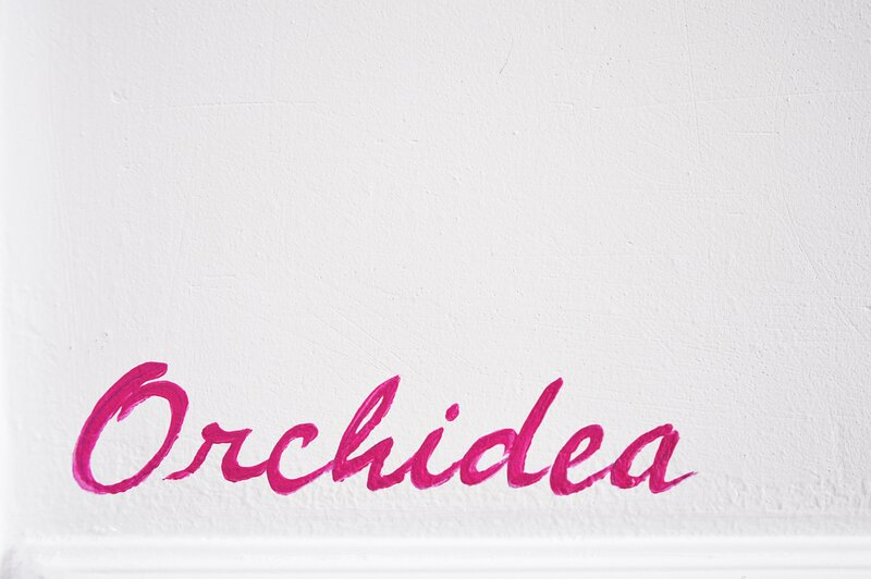 ISI6404 Orchidea by Holiday World, holiday rental in San Michele di Ganzaria