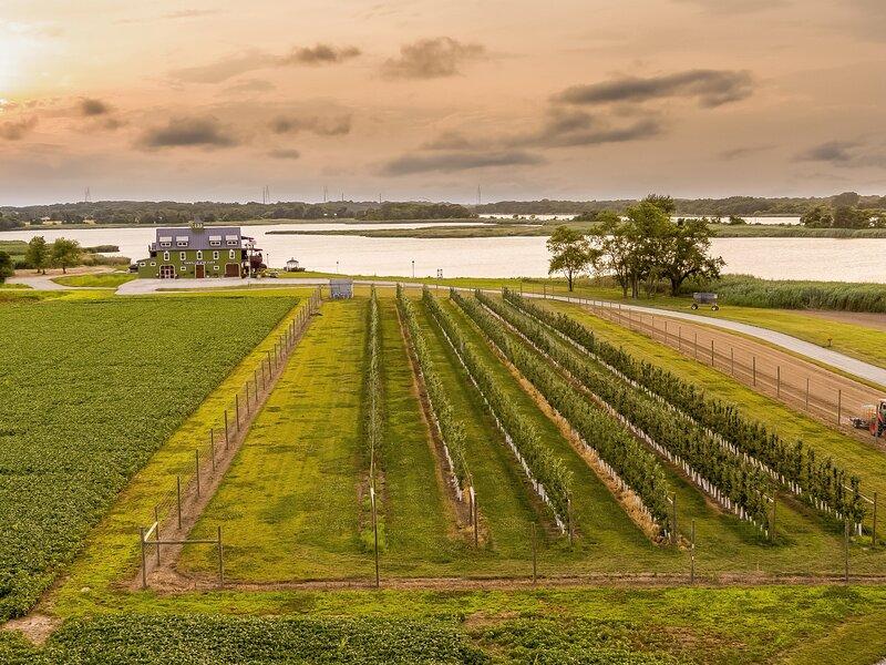 Tentrr Signature Site - Thousand Acre Farm -- collab, vacation rental in Elkton