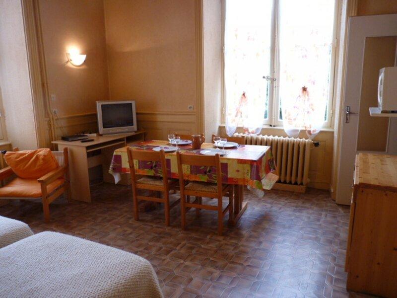 Studio tout proche du Centre, du Parc de Verdure et des Thermes Atrium..., holiday rental in Drumettaz-Clarafond