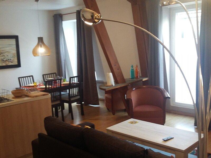 Coeur de Ville, T2 aménagé avec goût, orienté Est au 3ème étage avec asc, holiday rental in Mouxy