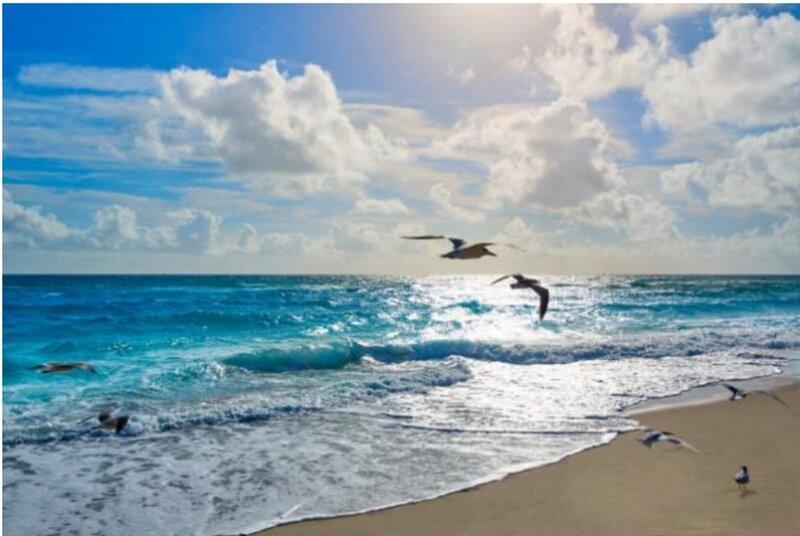 Perfect Treasure In Boynton Beach, location de vacances à Delray Beach