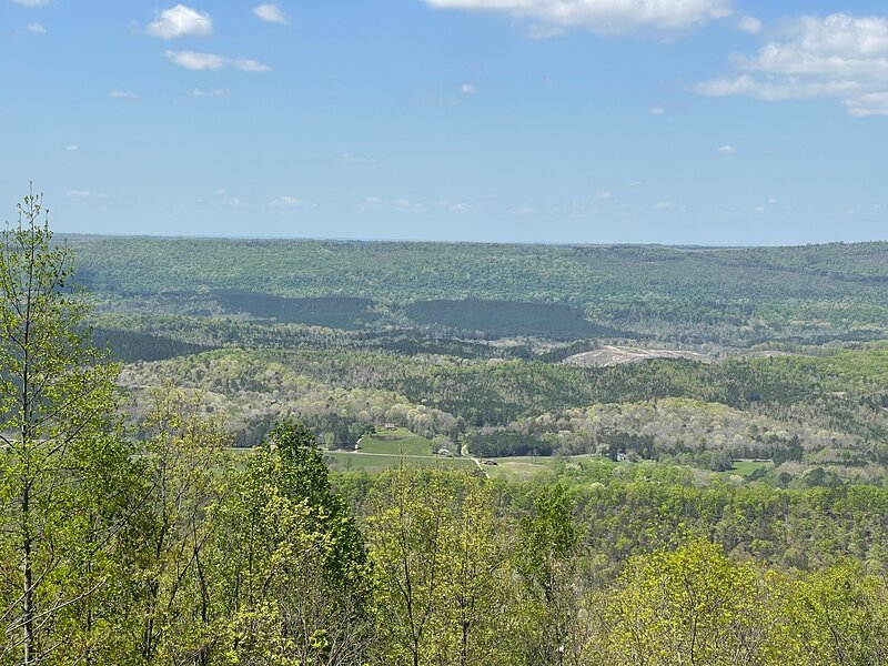 BEARLY BAMA - Edge of Lookout Mountain, Scenic views for miles & Pet Friendly, holiday rental in Mentone