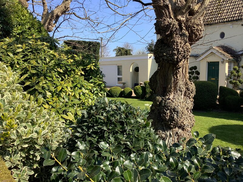 The Apartment at Solley Farm House, Sandwich, holiday rental in Sandwich