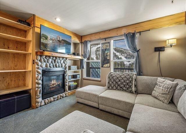 Private Condo - Ski in Ski out at Schweitzer Mountain Resort, aluguéis de temporada em Luby Bay