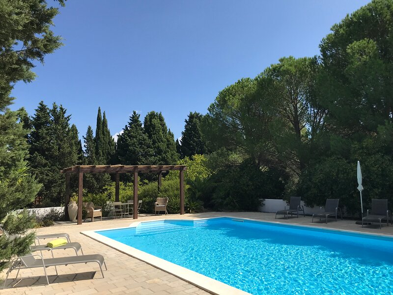 Puglia Country Estate. Valle d'Itria.  Private pool and 5 acres rolling grounds., holiday rental in Martina Franca