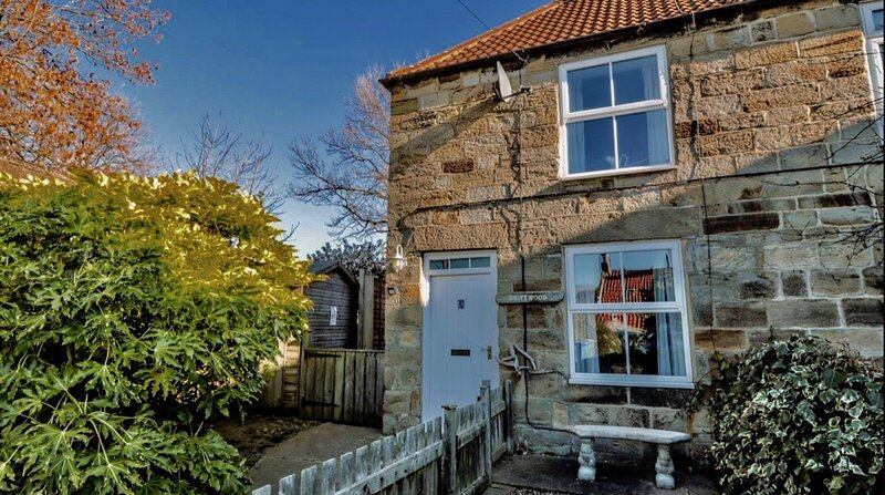 Driftwood cottage a quiet retreat, holiday rental in Hinderwell